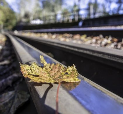 Don't Use Your Own 'Leaves On The Line' Type Excuse In A Press Release